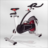 Luxurious Spinning Bike/ Indoor Spin Bike/ Gym Spinning Bike for Sale (BSE01)