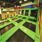 Dreamaland Customized Big Indoor Wholesale Trampoline