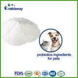 High Activity Cats Probiotics Food Ingredients Softgel Healthy Gi