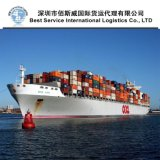 Shipping Freight Forwarder From China to Seattle (USA)