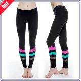 Dry Fit Women Gym Wear Sexy Fitness Yoga Pants Leggings