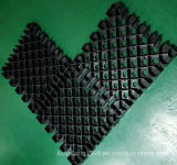 Plastic Paving Grids for Ground Stabilization in Guangzhou Factory
