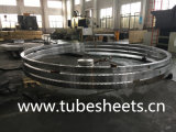 Customized Stainless Steel Flange