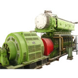 Waste Tyre/Plastic Pyrolysis Oil Generator Power Plant for Solid Waste Management