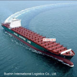 Professional Sea Shipping Logistics Agent From China to Santos/San Vicente/Sepetiba/Sepetiba/Suape/Ushuaia