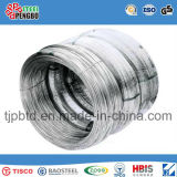 SAE1008 1018 1006 5.5mm 6.5mm 8.0mm 10.0mm Steel Wire Rod