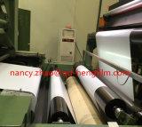 High Transparent Rigid Pet Film Rolls for Printing