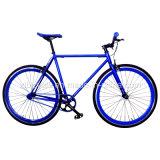 700c Blue Color Hi-Ten Frame Fixed Gear Bike