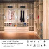 Modern White UV Walk in Wardrobe (FY258)