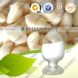Natural Allicin Garlic Extract Powder