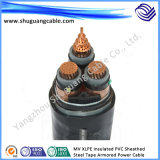 Mv XLPE Insulated PVC Sheathed Steel Tape Armored Electric Power Cable