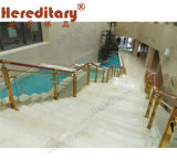 Elegant Strong 304 Stainless Steel Stair Railing/Baluster (SJ-903)