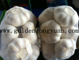 2016 Fresh New Crop Pure White Garlic