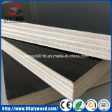 Black Film Faced Plywood or Marine Wood