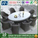 Outdoor Garden Patio Furniture Dining Set (TG-1632)