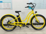 Fashion Beach/Snow Fat Tire E Bike