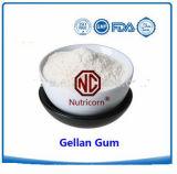 High Quality Gellan Gum ISO 22000 Verified Producer