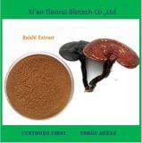 Hot Sale Reishi Mushroom Powder Extract