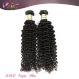 One Donor Double Weft Brazilian Cheap Curly Human Hair Weaving