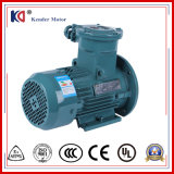 AC Induction Ex-Proof AC Electric (Electrical) Motor with Energy Saving