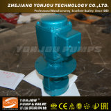 Electric Motor Cooling Water Pump