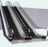Escalators and moving sidewalk