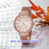 Custom Name Watch Alloy Business Wrist Watches (WY-17027A)