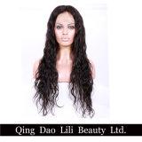 Fast Shipment Wet and Wavy Virgin Brazilian Human Hair Full Lace Wig