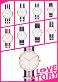 Custom Charm Alloy Watches with Quartz Movement (DC-856)