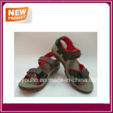 Red Colors Sandal Shoes for Sale