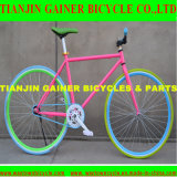 Tianjin 700c Road Bicycle Equipped with Fixed Gear