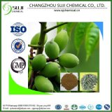 Top Quality Olive Leaf Extract/Oleuropein Extract/Plant Extraction