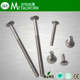 Stainless Steel Carriage Bolt (DIN 603)
