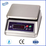 Super-6 waterproof IP68 Stainless Steel Scale 6kg