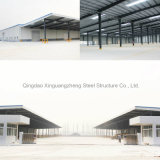 Good Insulation Steel Structure Workshop (SSW-14533)