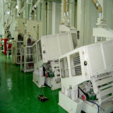 50tpd 100tpd 200tpd 300tpd 400tpd 500tpd Turn Key Rice Mill