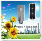 Hot Sale 10W Solar Garden Lamp All in One Alone