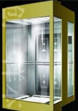 Fjzy-High Quality and Safety Home Lift Fjs-1616