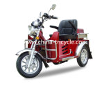Gasoline Disability Scooter with 110cc (DTR-2)