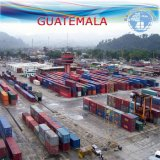 Ocean LCL Freight Agent to Guatemala by Carrier Nyk