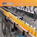 Mango Tea Drink Processing Line