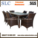 Outdoor Wicker Furniture/ Aluminum Table Set (SC-B1080)