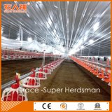 Good Quality Automatic Poultry Farm Machinery with Matching Prefab Shed Construction