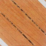 600*600mm Rustic Porcelain Floor Tile/Wall Tile (66020)