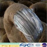 High Quality Galvanized Iron Wire (XA-409)
