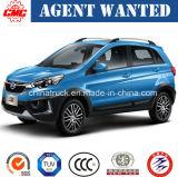 No. 1 Hot Selling Chinese Classic SUV--Gasoline1.5t Mt Q25 Sedan Car SUV