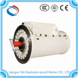 Ybsd Three Phase Induction Explosion Proof Motor 55kw B5 Mounting