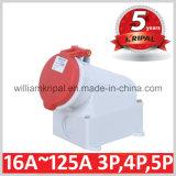 IP44 32A 3p+N+E Electric Socket