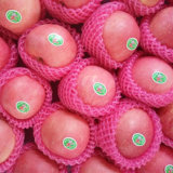 Natural Health Fresh FUJI Apple for Sale