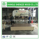 Melamine Faced Wood Grain Color 18mm MDF Board